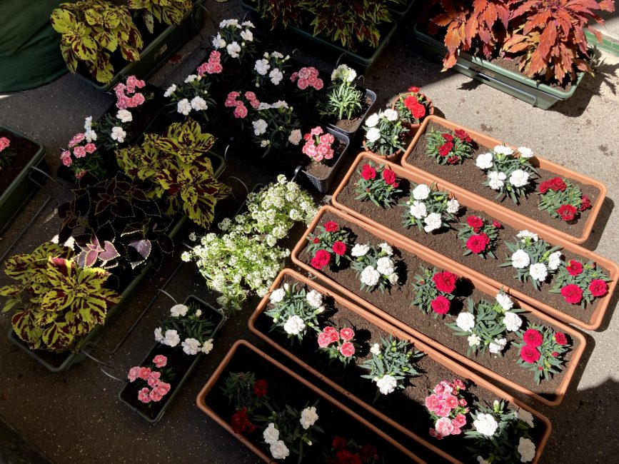 Beültetett balkonládák a nyári balkonszezonban